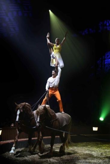 cheval&air-firmin-svetlana3